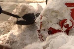 Keeping fire hydrants clear of snow is a BIG JOB!